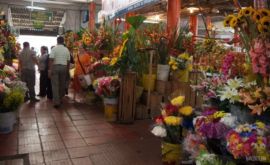 Buy flowers at the Galeria Alameda