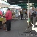 Saone Farmers Market in Lyon