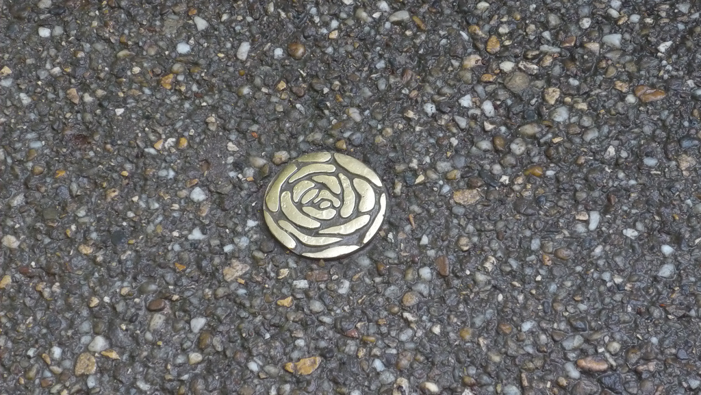 metal rose on street lyon france