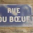 Street of Beef Lyon France