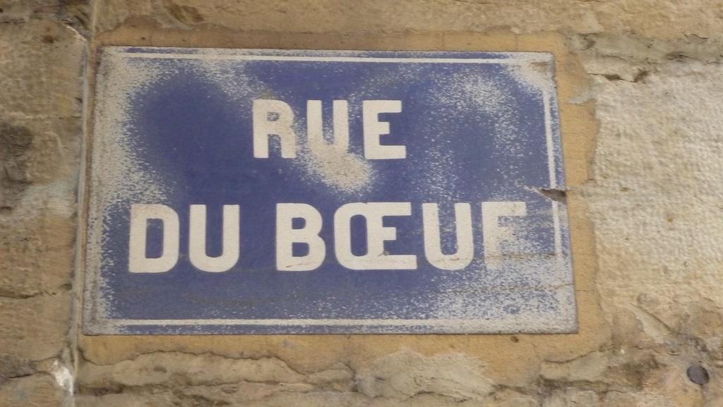 Sığır Lyon Fransa Sokak
