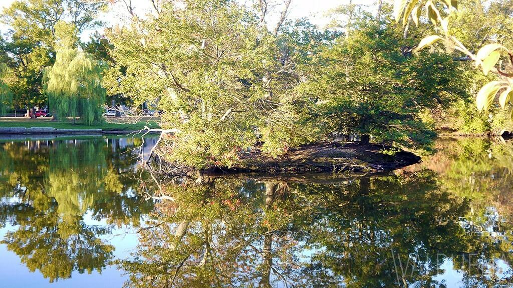 对于平静和自然退房阿斯伯里帕克日落公园湖