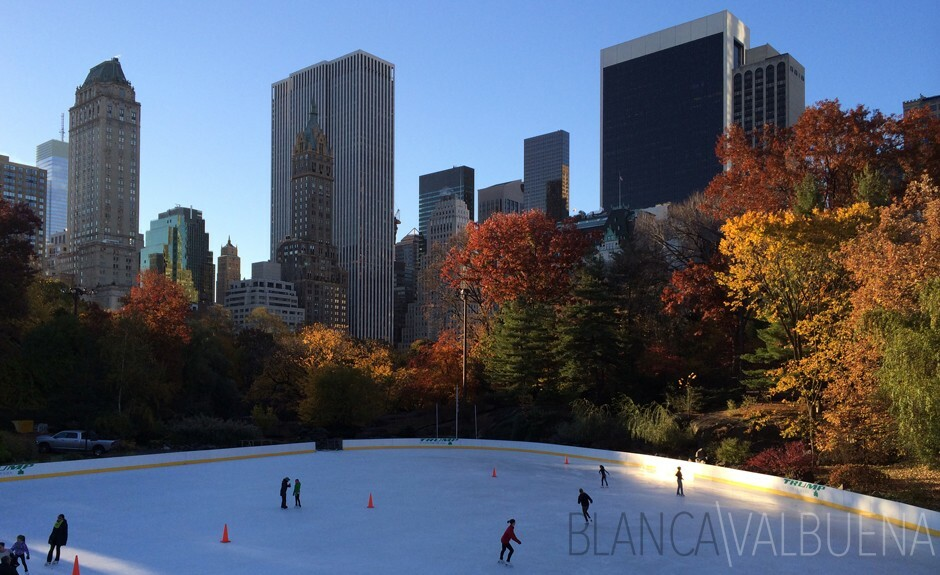 Ice Skating in Central Park nYC