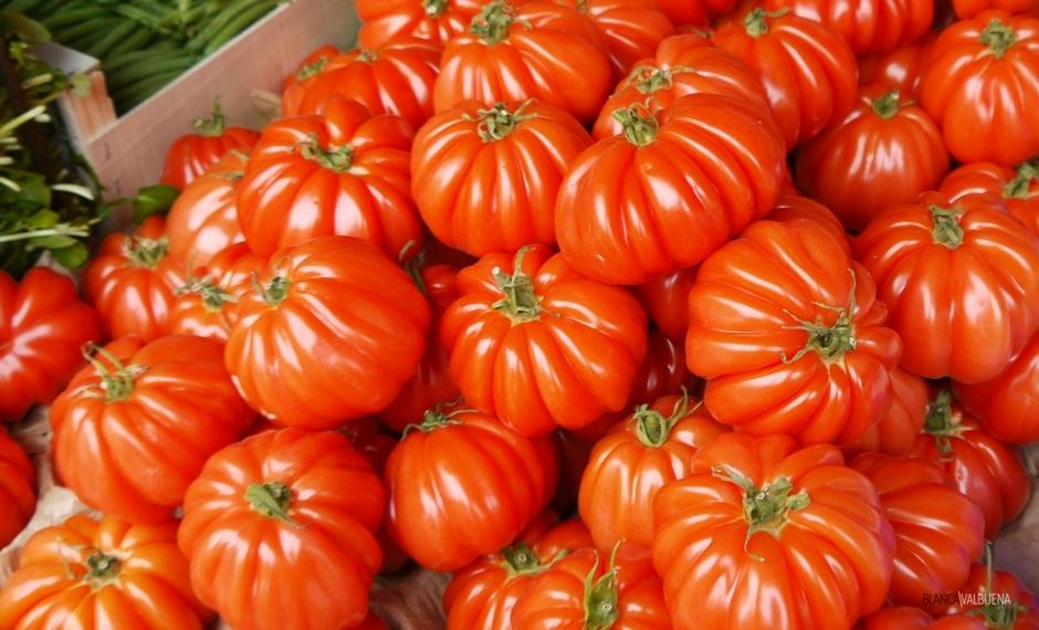 I pomodori in Borgogna sono meravigliosi