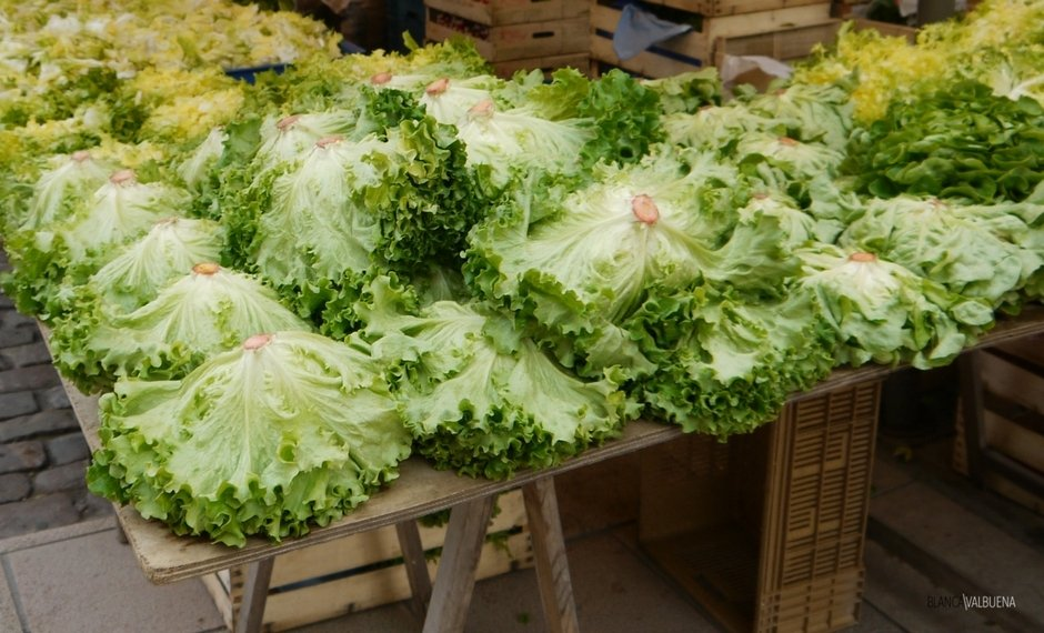 You can get many types of lettuce at the Beaune Farmer's Market