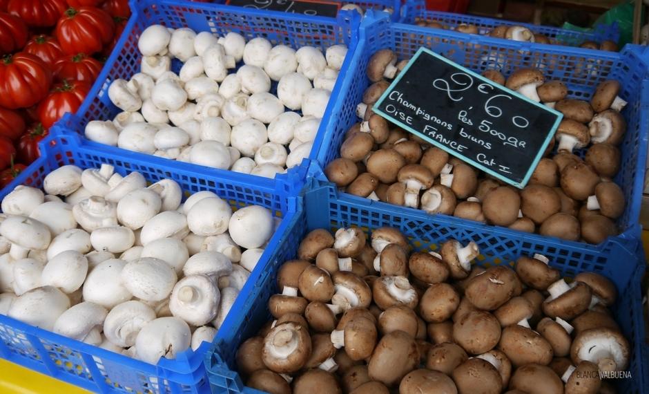 Ci sono tutti i tipi di funghi nel mercato di Beaune