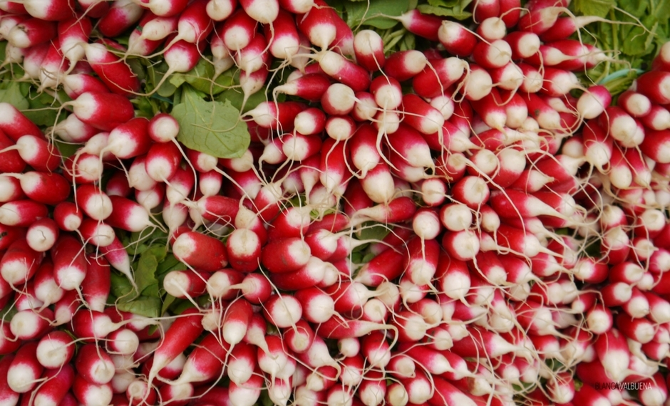 You can get all types of radishes at the Beaune Farmer's Market