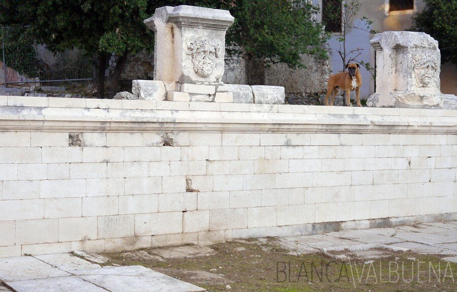 Ruins in Zadar's Roman Forum