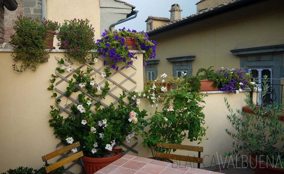 Cortona's Casa Chilenne is the best bnb in town