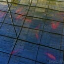 A reflection of a roof on a pond with fish