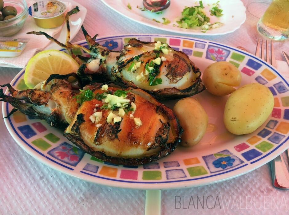 Fuseta Cafe dos Mestres gelen Mürekkepbalığı