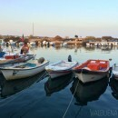 Fishermen's boats in Fuseta in the Algarve