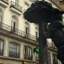 The Bear and tree sculpture is the Symbol of Madrid