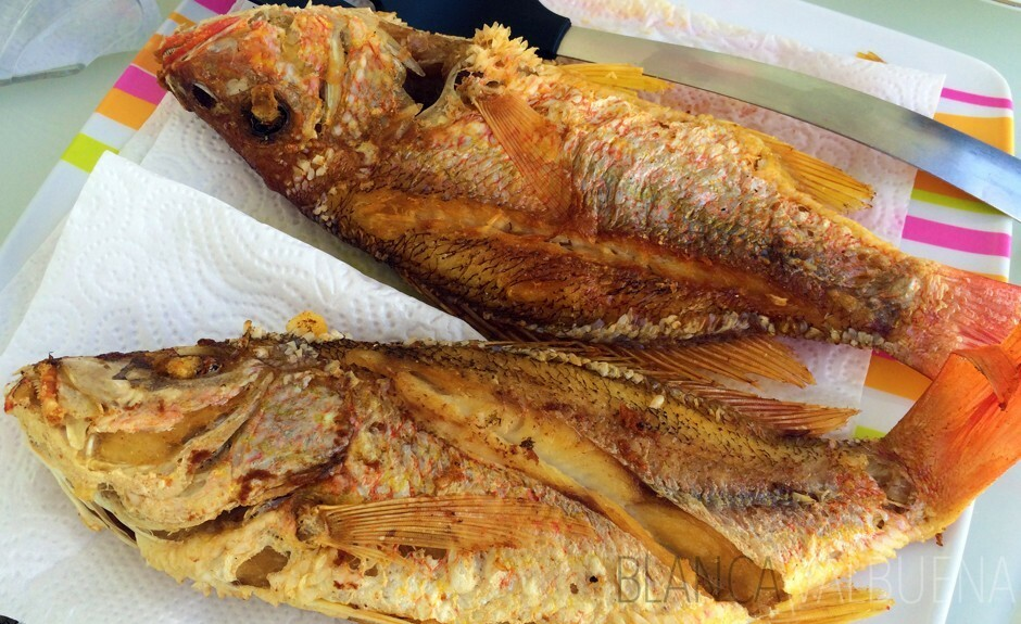 La boquilla morros in cartagena colombia blanca valbuena for Fish fry near me