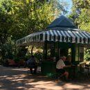 Você pode ler livros gratuitamente no Jardim da Estrela, em Lisboa