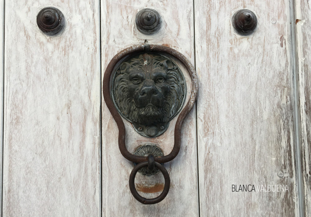 This door knocker has a less complicated lion design