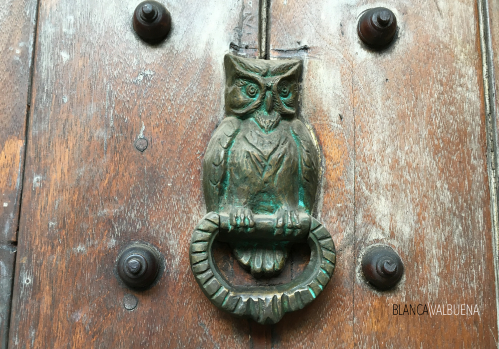 An owl door knocker in Cartagena Colombia