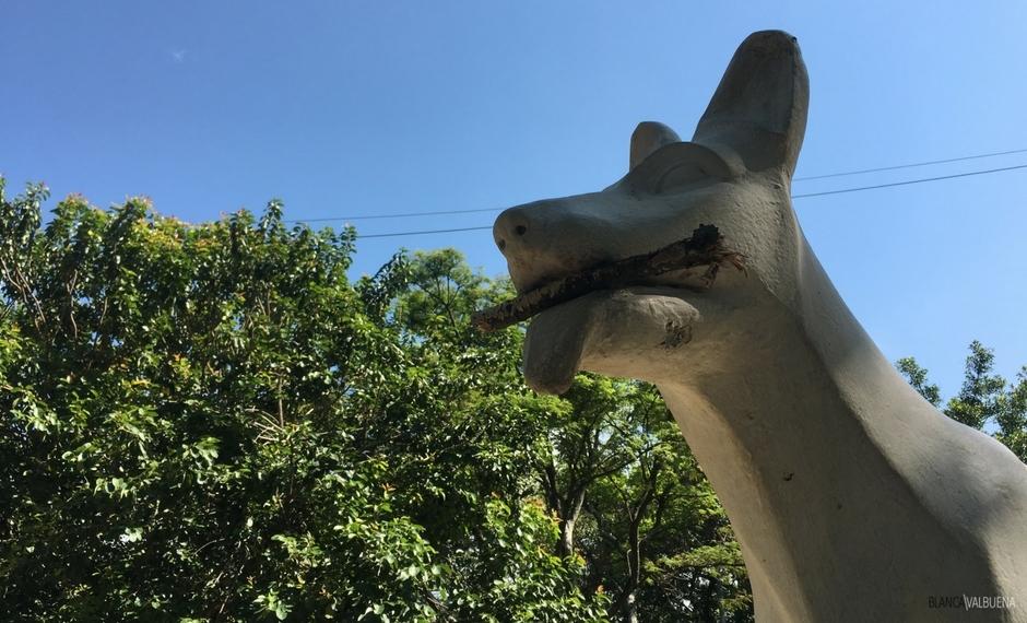 Der Parque del Perro ist zu einem Viertel Hund gewidmet