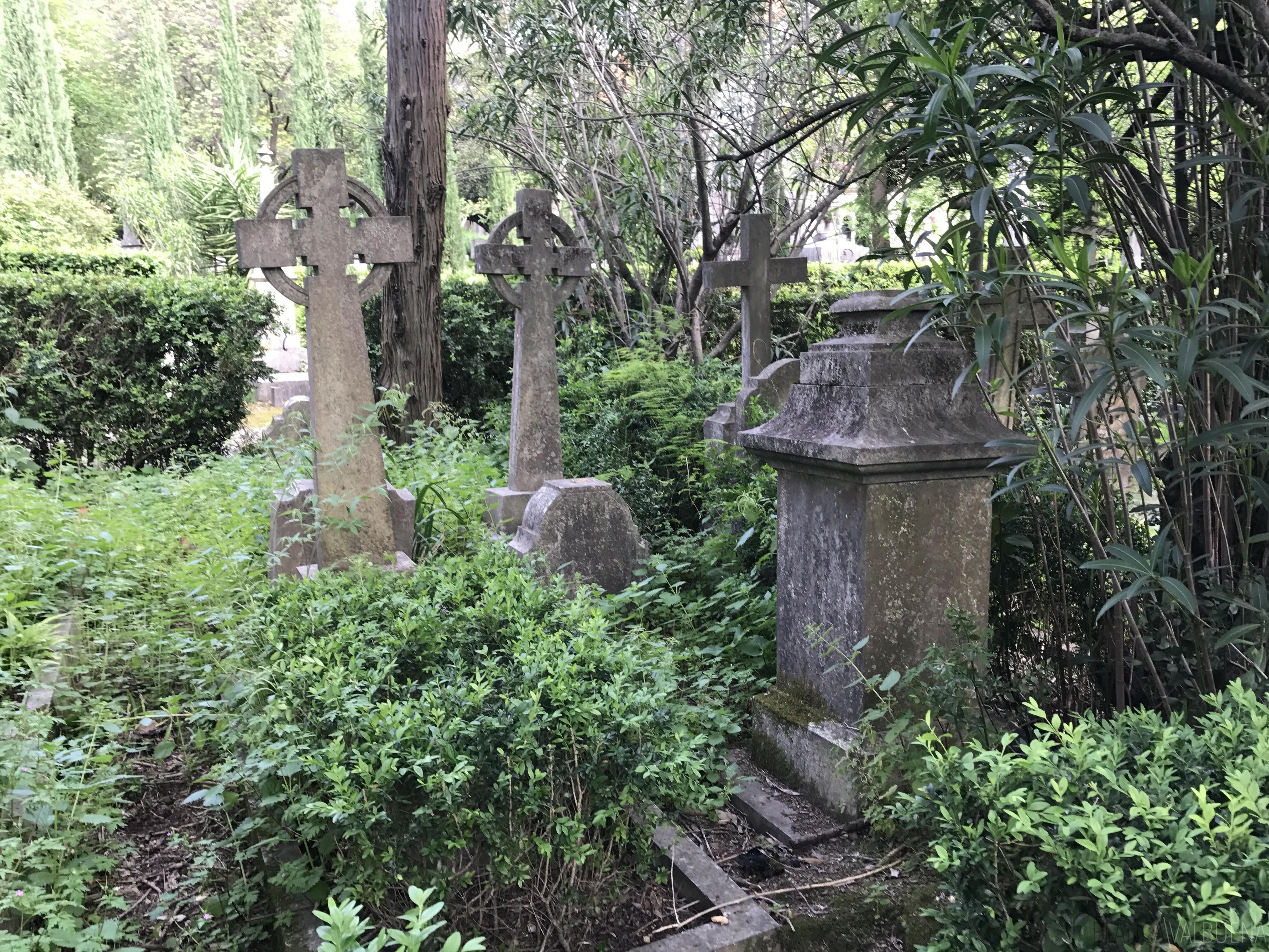 浪漫的墓地在里斯本