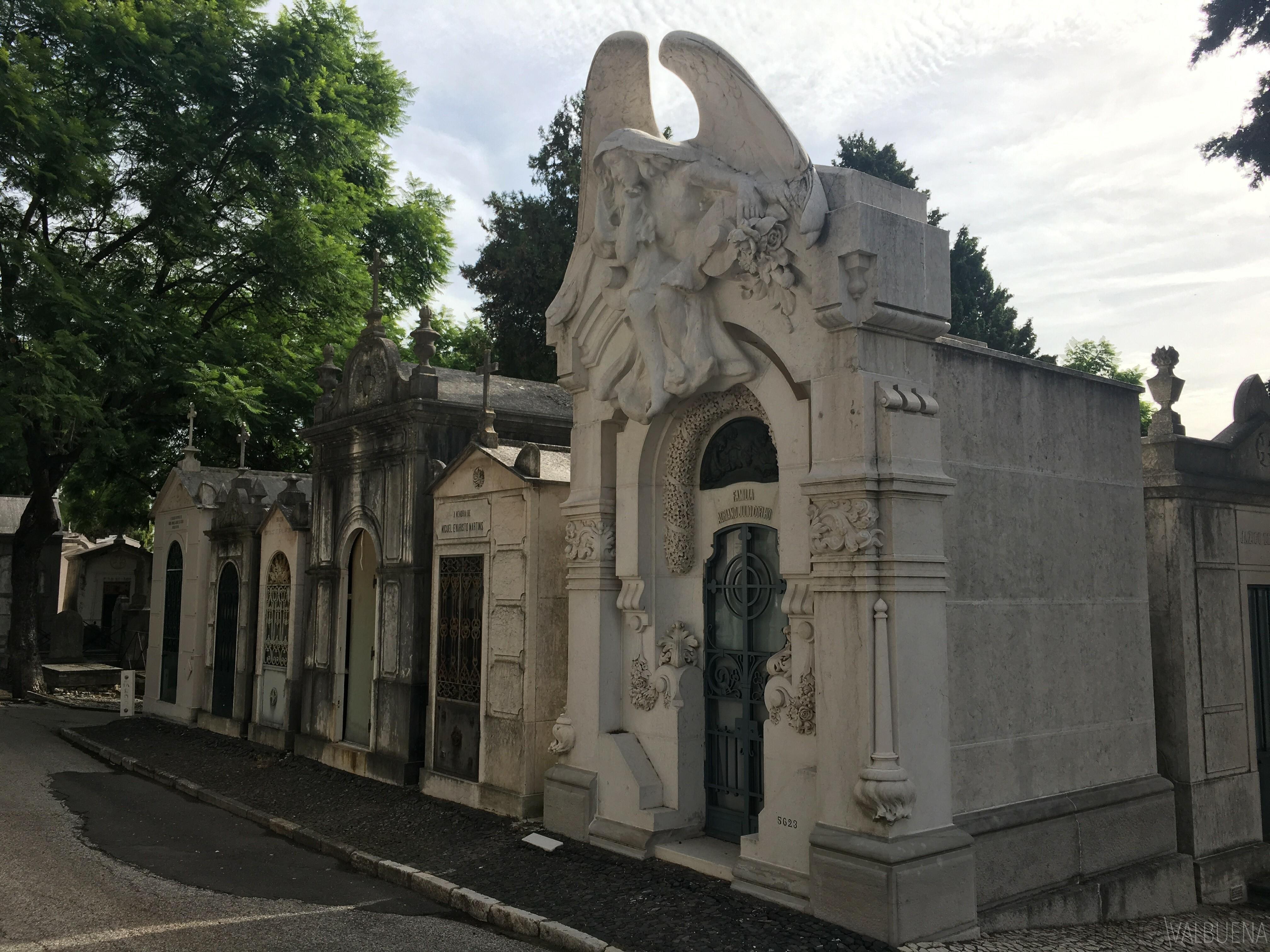 Adriano Julio Coelho tomb