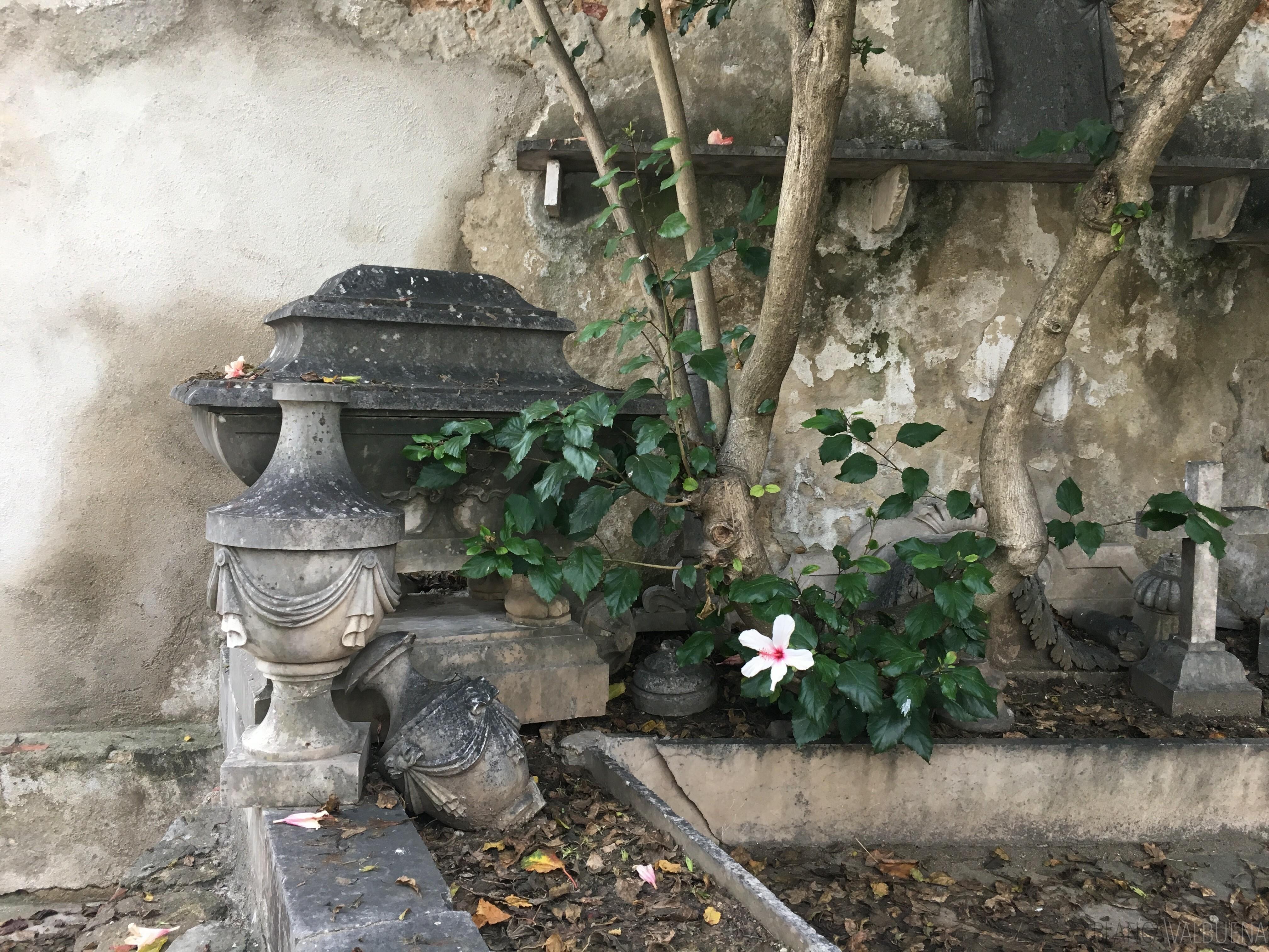 Prazeres Friedhof ist sehr schön