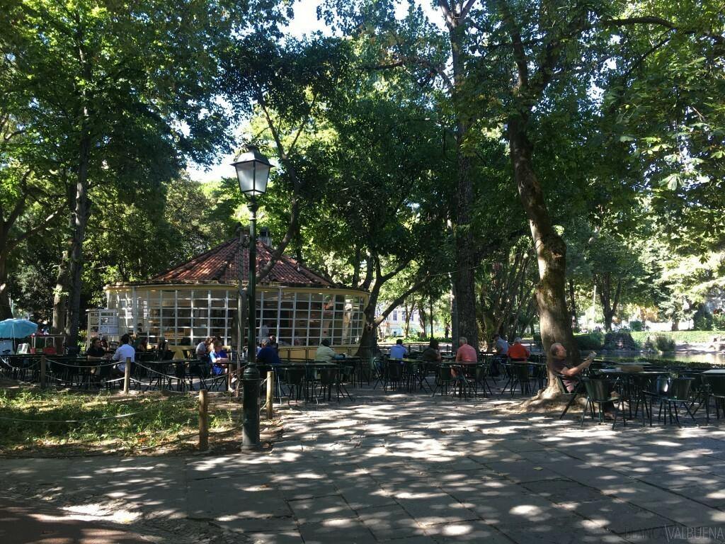 Los mejores parques de Lisboa incluye Jardim Estrela