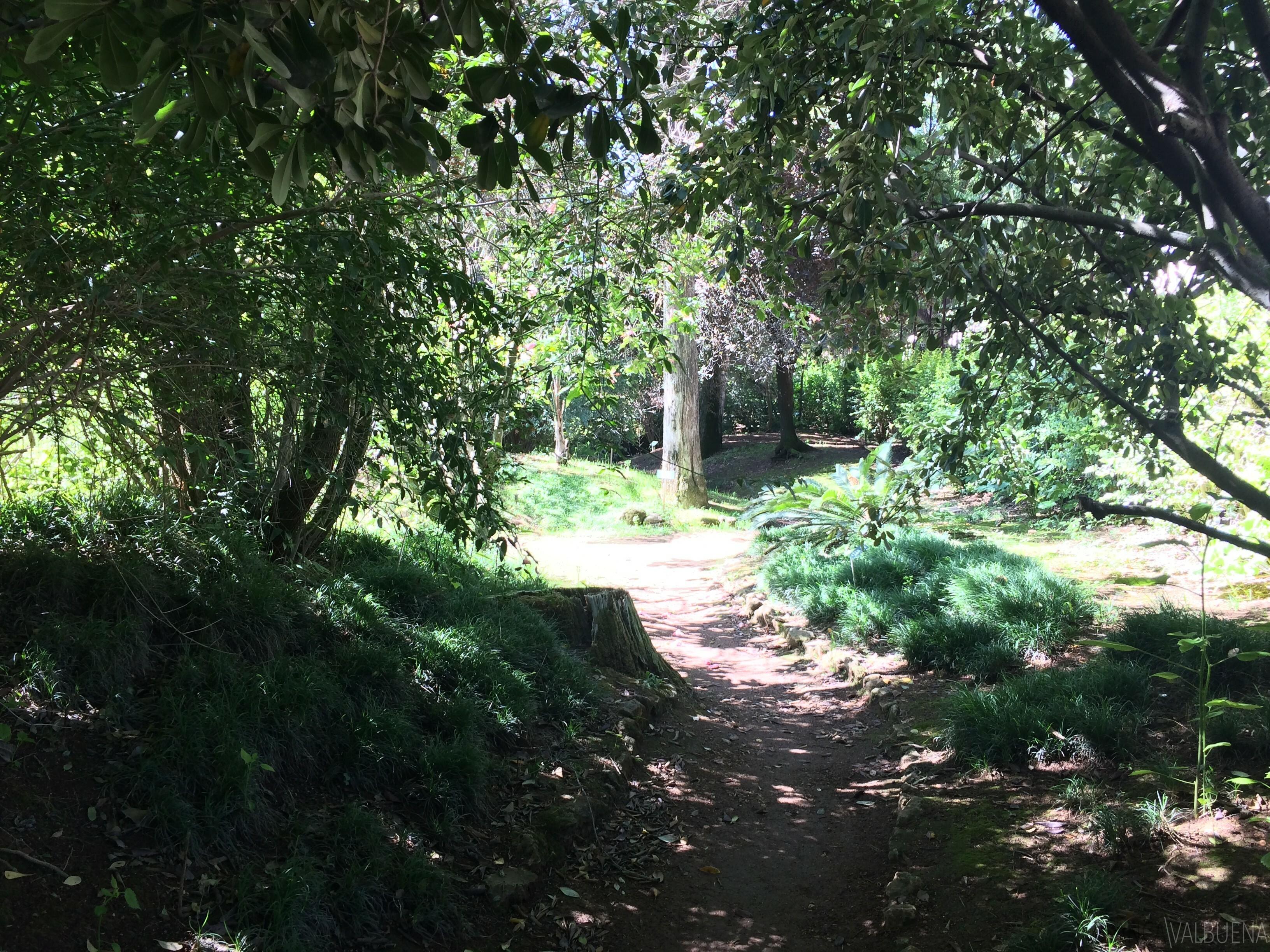 植物园贝伦是背后的葡式贝伦