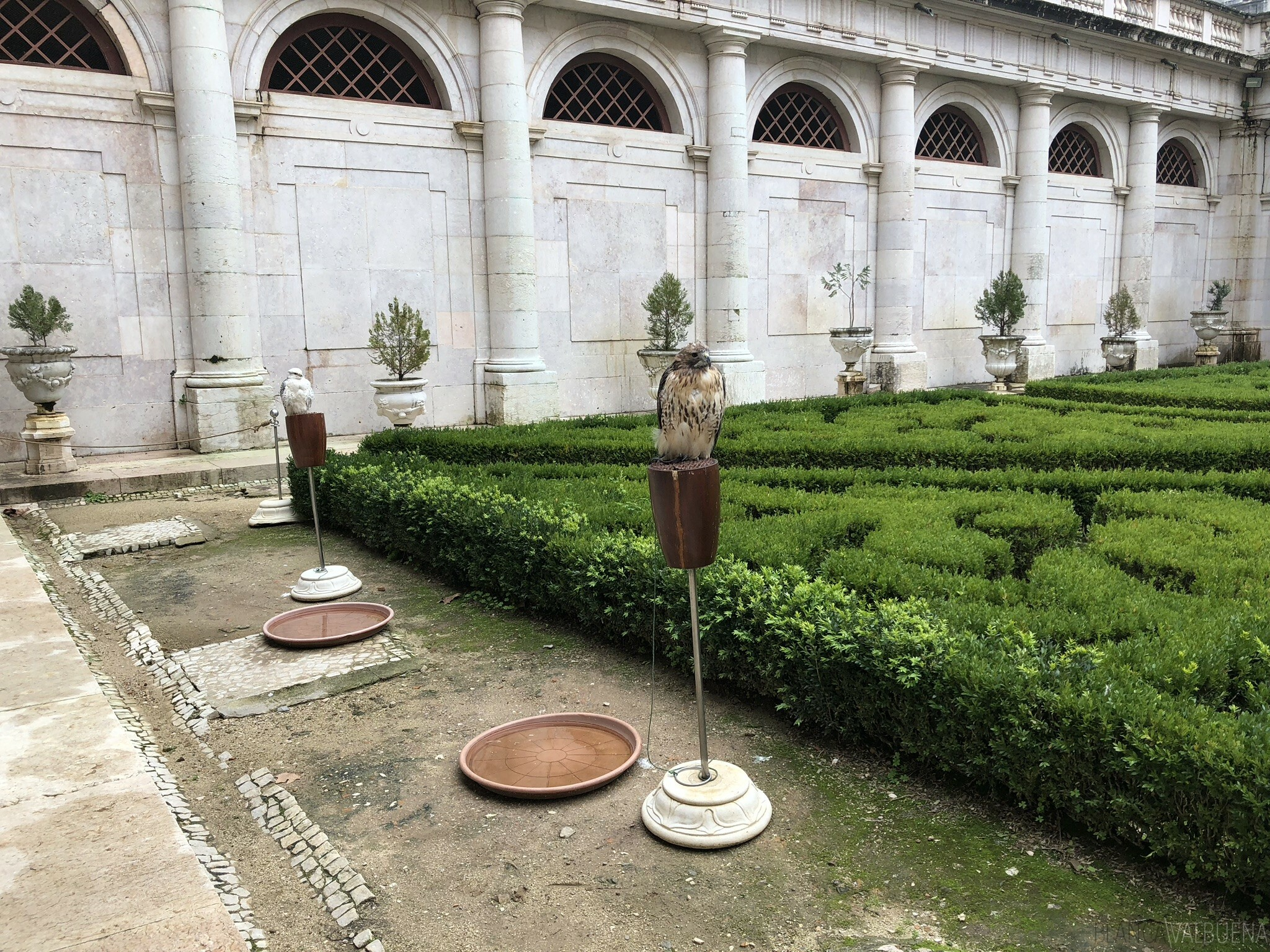 Mafra's palace is a great learning place for kids