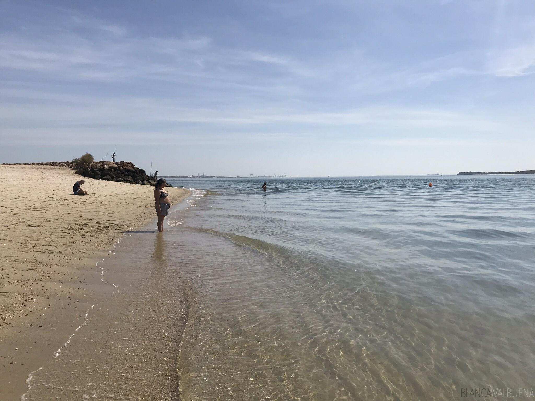 Playa De Albarquel