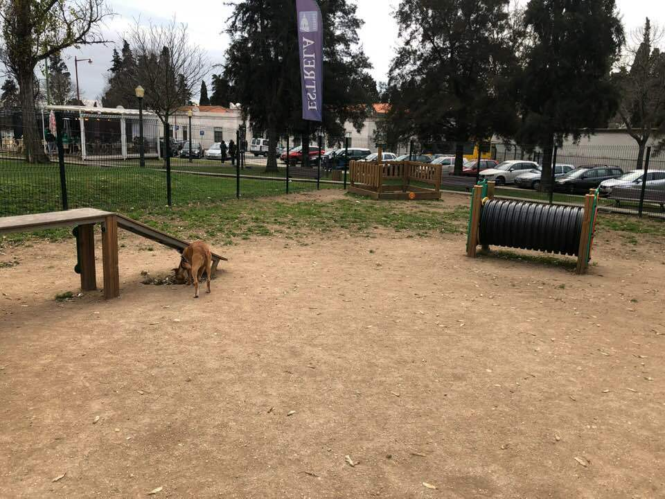 Dog run Lisbon Campo de Ourique
